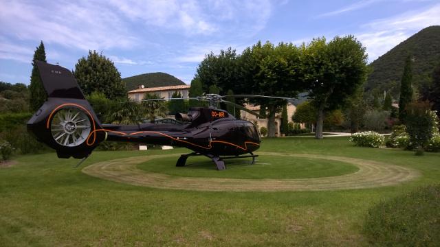 EC-130 in a garden